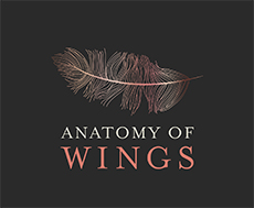 Anatomy of Wings: A Conversation of Authentic Connection