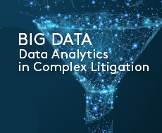 Big Data: Data Analytics in Complex Litigation CLE Seminar