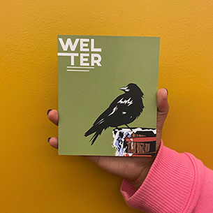Cover of Welter
