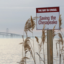 Law School Hosts Environmental Symposium on Chesapeake Bay Nov. 16