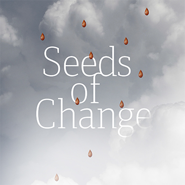 Seeds of Change: Battling Baltimore's Food Deserts
