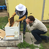Photographer Chris Myers gets in close to the bees