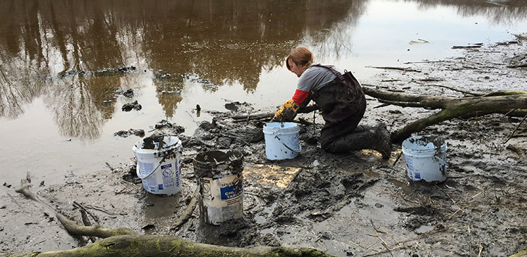 collecting mud